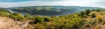 Rheintal bei Oberwesel (11neu) by Erhard Hess