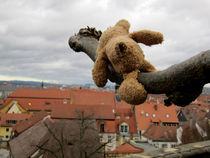 Blick über Bamberg von Olga Sander
