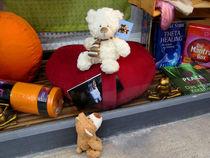 Heilende Kräfte der Teddybären by Olga Sander