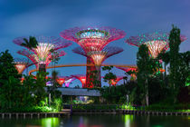 Garden by the Bay in Singapore von perfectlazybones