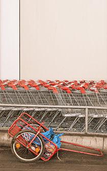 carts von Vera Kämpfe