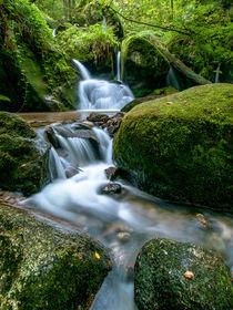 Folge dem Wasser von Andreas Wonisch