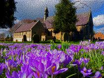 Flowers in church yard von Robert Gipson