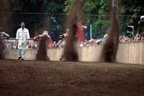 Grasbahnrennen 2 von Manfred Duckhorn