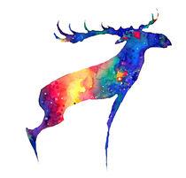 Moose von verismaya