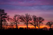 Sonnenuntergang von Dennis Stracke