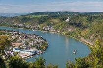 Rheinbogen bei Spay von Erhard Hess
