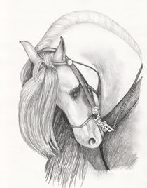 Horse by Brandy House