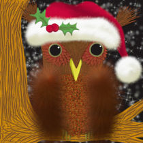 The Christmas Eve Owl von Michelle Brenmark