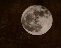 Vollmond - full moon von leddermann