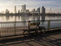 Wien: mit dem Tretroller an der alten Donau by Ernst  Michalek