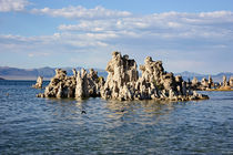 At-the-mono-lake-03