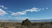 mono lake - IV by meleah