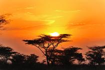 African Sunset von Jürgen Feuerer