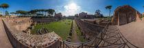 Italien, Rom: Gartenstadion am Palatin von Ernst  Michalek