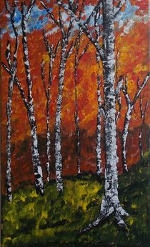 Autumn Birches by Zeke Nord