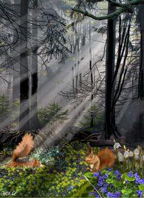 Waldfrühling von Heidi Schmitt-Lermann
