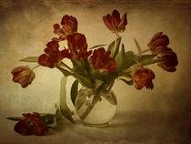 Tulpenstrauß by Franziska Rullert