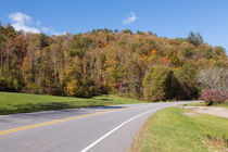 Drive Into Autumn Forests by John Bailey