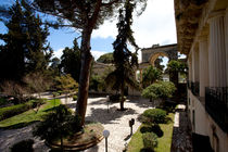 Garden of the Palace of St. Michael and St. George, Corfu, Greece by Andreas Jontsch