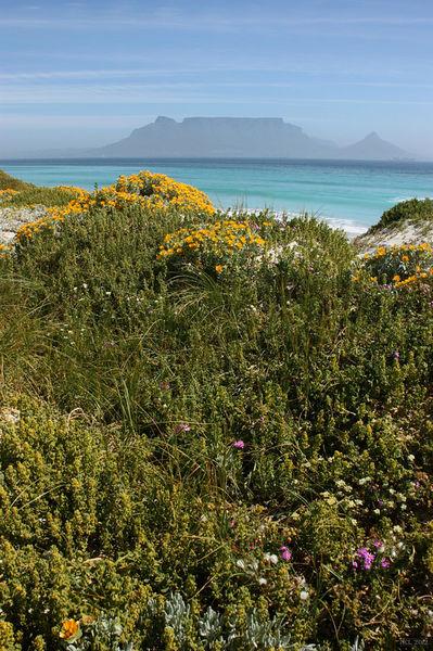 Southafricatablemountain02