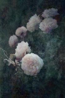 Perennial Gardens - Fall #04 von loriental-photography