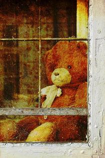 Vergessener Teddybär by Erwin Lorenzen