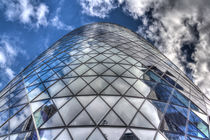 The Gherkin Building London by David Pyatt