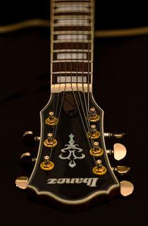 Ibanez AFJ957 Jazz Guitar by Colin Hunt