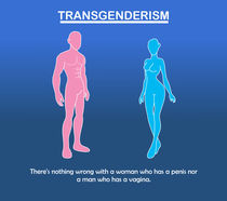 Transgenderism von Salim Al-Mumin