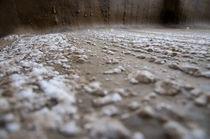 Salt by Dana Marza