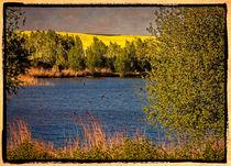 Natur 2 by Uwe Karmrodt