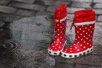 Schöne Regenzeit in Deutschland von Tanja Riedel