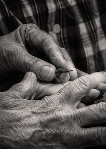 Hands Holding a Hummingbird von Jon Woodhams