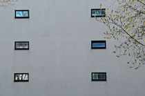 Facade-windows-photo-exhibit
