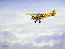 Piper J-3 Cub by bill holkham