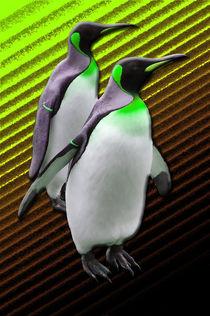Pinguine, zwei wirklich schräge Vögel by Corinna Stalder