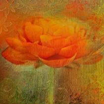 Colorful Impressions von Annie Snel - van der Klok