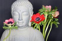 Windröschen Buddha von Kathleen Follert
