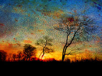 coloured morning von urs-foto-art