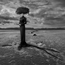 Empty Nest von Dariusz Klimczak