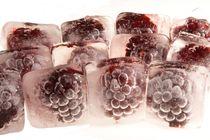 Eiskalte Brombeeren - Frozen blackberrys von Marc Heiligenstein
