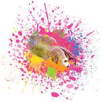 Ameisenbär - Klecks-Tier / Anteater Splatter Animal von morn