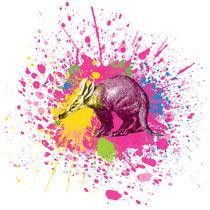 Erdferkel - Klecks-Tier / Aardvark Splatter Animal by morn