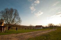 New old village von Dana Marza