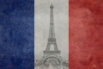 Natinal flag of france with vintage Eiffel tower von Bruce Stanfield