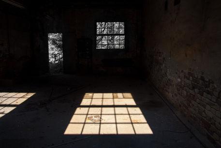 Fenster-9405