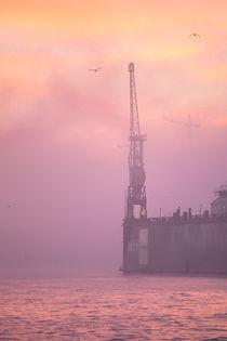 45-fischmarkt-morgens-nebel