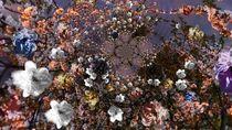 Blütenrausch -1- von Christine  Hofmann