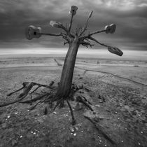 The Music is born von Dariusz Klimczak